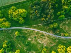 Bike Lane | Kaunas Aerial