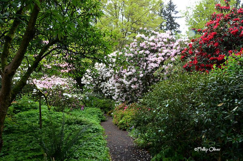cecil-smith-garden-6