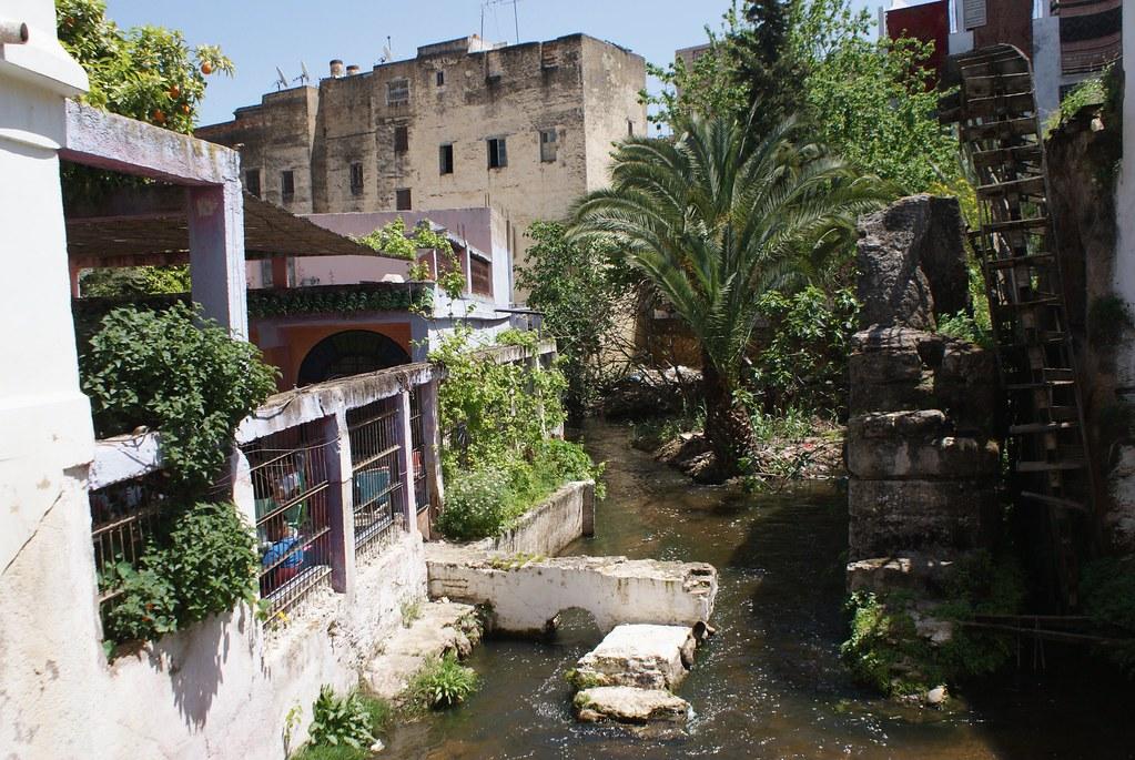Rivière entre le jardin Jnan Sbil et le café de la Noria à Fès.