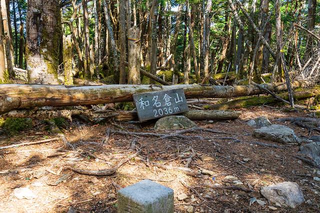 樹林に囲まれた和名倉山