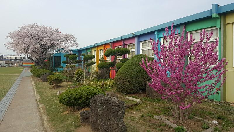 Deoreok School (7)