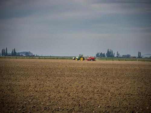 Samish Flats Fields-006