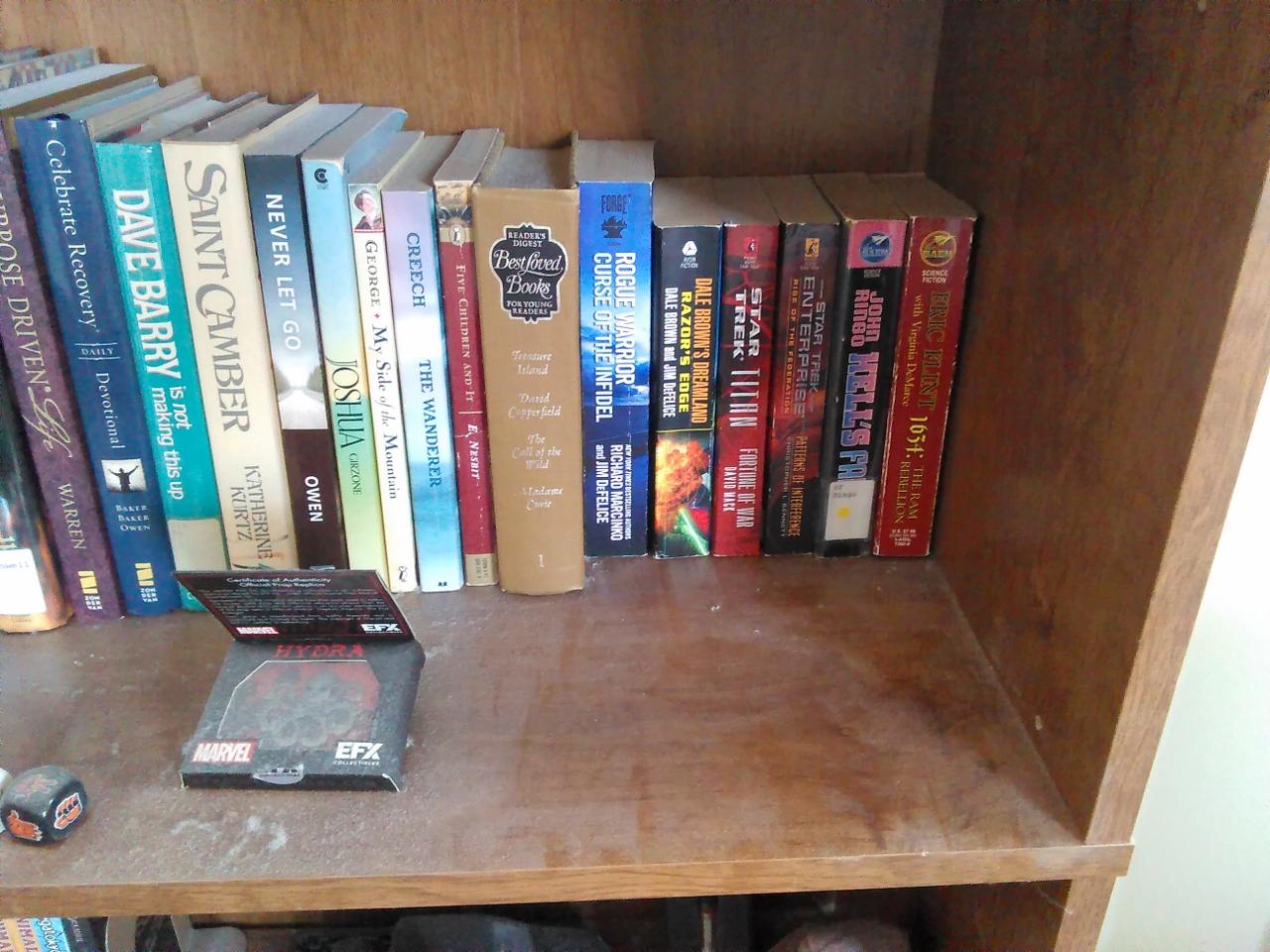 Bookshelf 5-23-2018 8-47-26 AM