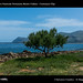 1059_D8C_1491_bis_RNO_Monte_Cofano