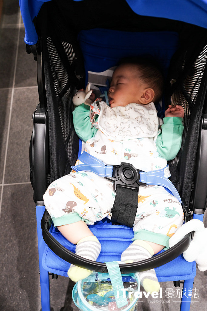 轻量型婴儿车推荐 Combi F2 Plus (45)