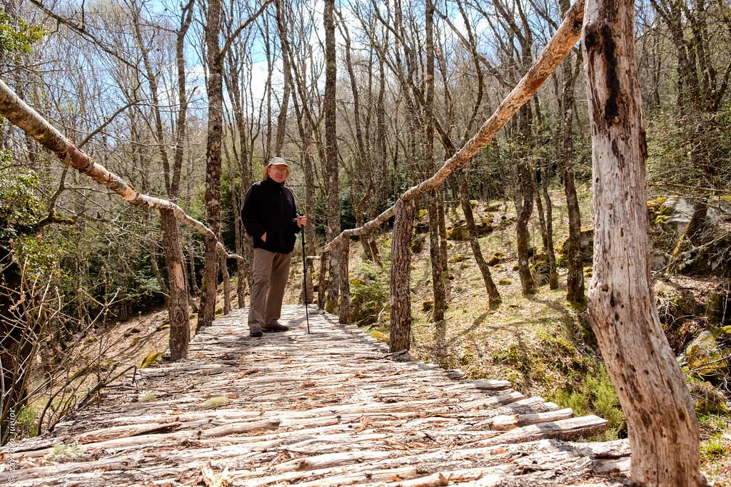 23.- 2018.- Requejo - Caminhada pelo sendero interpretativo del Tejedo ou Teixedo (212)