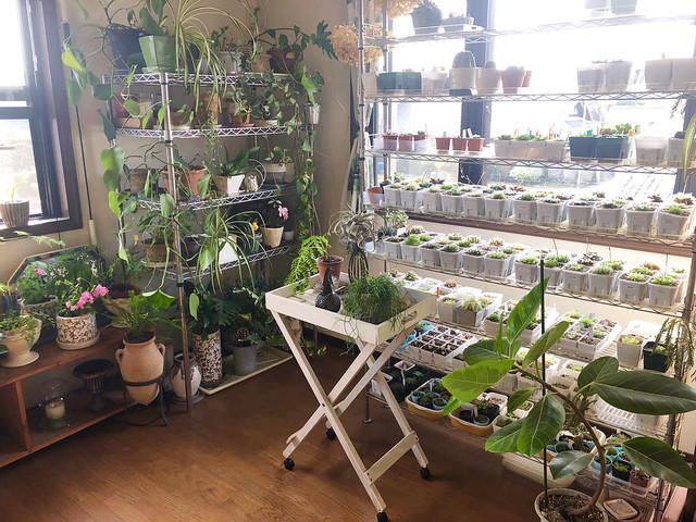 greenroom-0