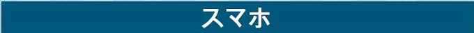 GearBest 日本限定クーポン セール (12)