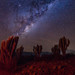 Cielos de El Palqui by lpcortesfotografias