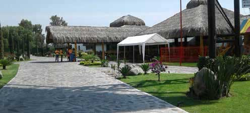 restaurant-amlo1
