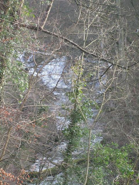 Waterfall in Ceres Burn, Kemback Through Trees