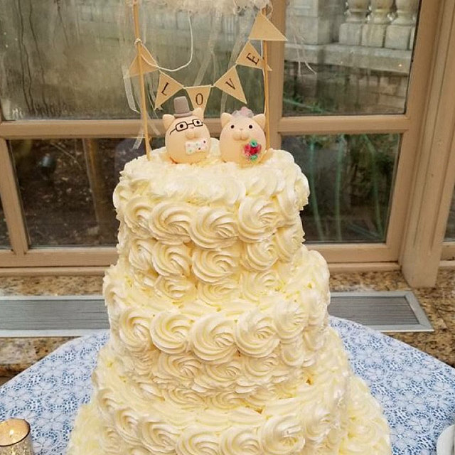 Real wedding photo -- Handmade cats bride and groom with cake banner ...