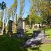 Irvine Old Parish Churchyard (184)