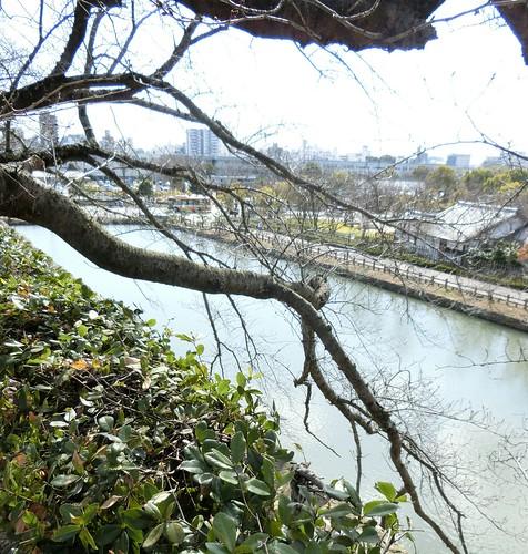 外堀を見渡せる公園