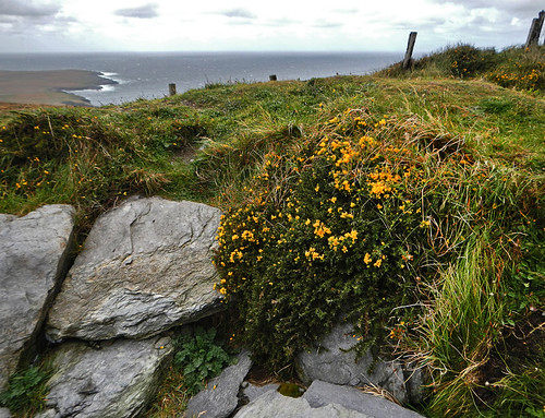 Rocky headland at he Ring of Skellig within the Ring of Kerry in Ireland