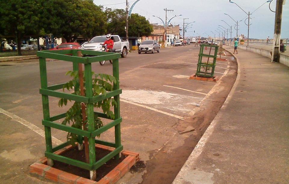 Que venham as árvores!, de Helvecio Santos, Plantio de árvoras na orla de Santarém. Foto: Tamara Saré