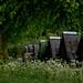 20180510-60_Cawston Farm - Huts - Footpath Marker Post