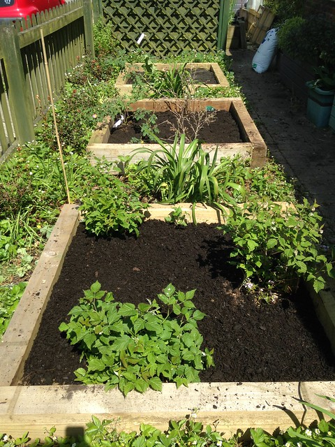 Peat-free raised beds