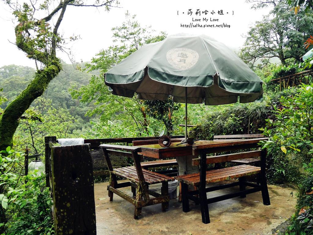 台北貓空景觀森林戶外餐廳推薦邀月茶坊 (7)