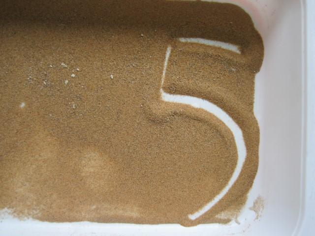 P4 NUMERO 5