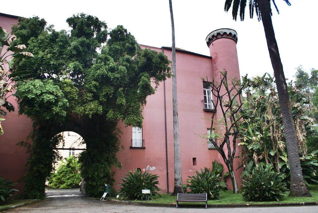 Musée botanique du jardin botanique de Naples.