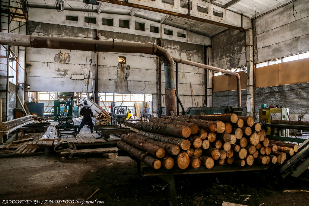 Кто в лесопильной теме знает толк предприятий, комбинат, стране, много, крупнейших, только, именно, виной, решили, дальше, другие, часть, пришёл, всему, древесностружечных, металлургическому, 1950х, места, здесь, конце