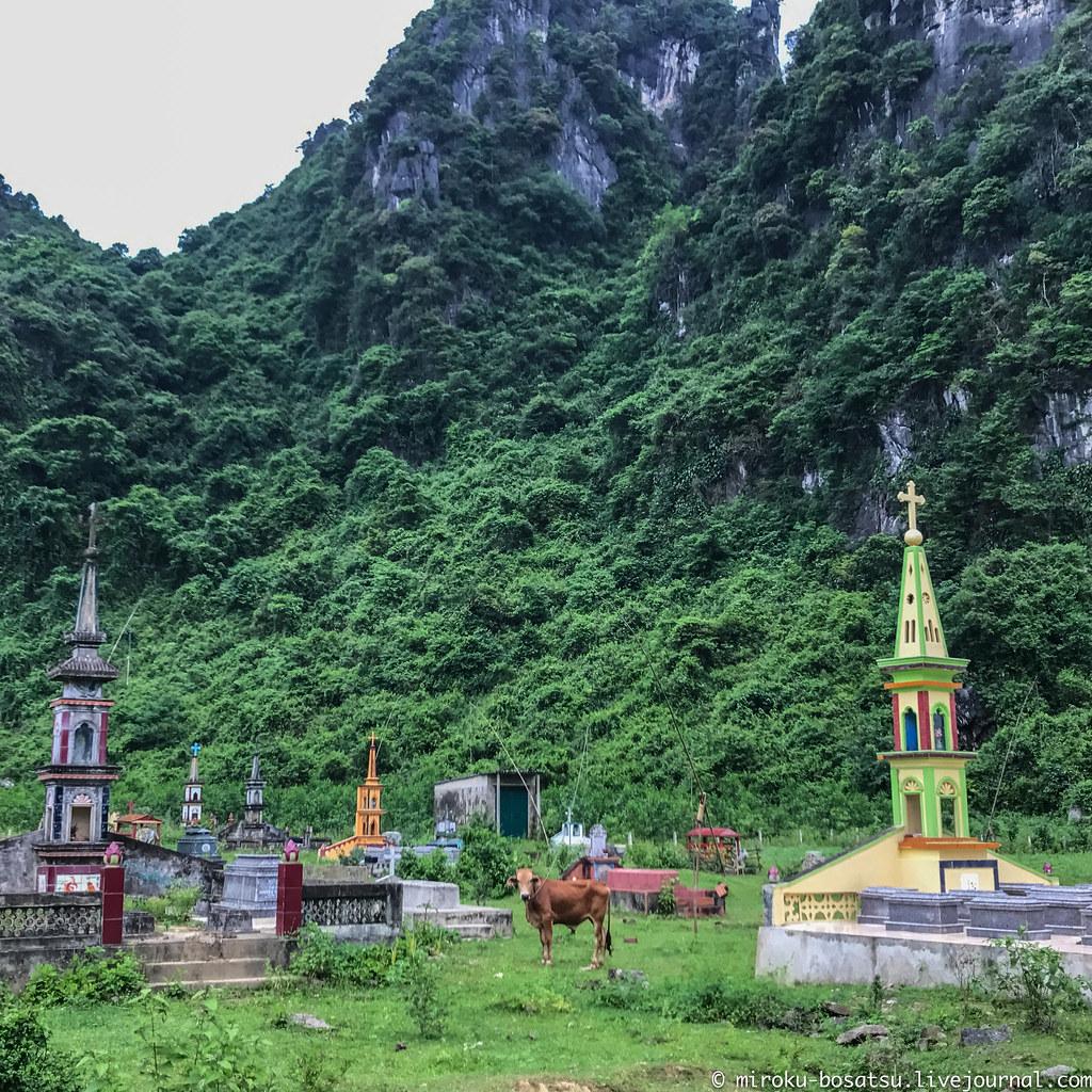 PhongNha22