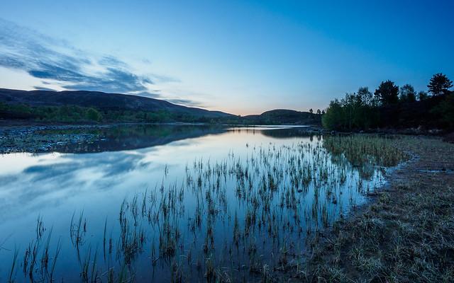 Local Loch