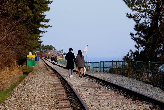 16철길 산책을 즐기는 시민들.