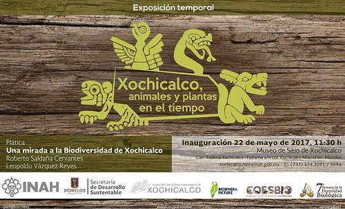 Xochicalco, animales y plantas en el tiempo
