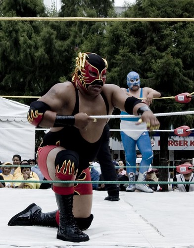 Toy Dog Design's photo of Lucha Libre.