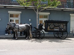amish(0.0), vehicle(1.0), horse and buggy(1.0), land vehicle(1.0), carriage(1.0), cart(1.0),