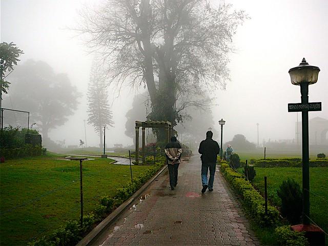 Mist ahead