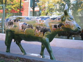 The Cows Are Out (#28)