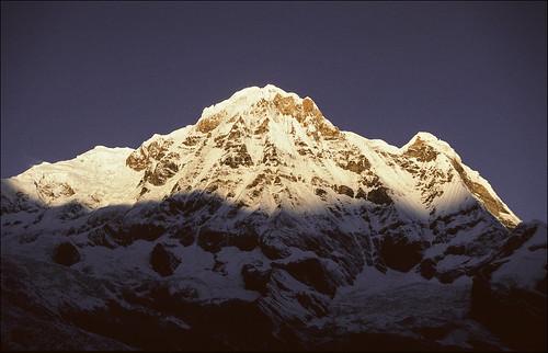 nepal mountains nature geotagged interesting slide explore transparency abc himalaya annapurna 1k ricohkr10 annapurnasouth flickrfly annapurnasanctuary ronlayters moditse slidefilmthenscanned 7219m annapurnahimal godessoftheharvest gandakizone annapurnadakshin geo:lat=285529 geo:lon=838172 अन्नपूर्ण highestpositioninexplore438onthursdaymay232013