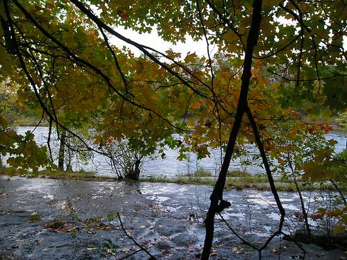 autumn geocaching blackriver watertown