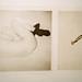 Borrow Hermes' wings / Lainaa Hermeeltä siivet, 1997