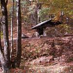 Pinefield Hut