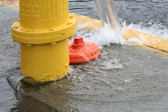 Gushing hydrant 9578