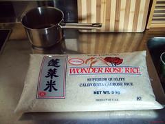 29 Jan 2007 (Rice,rice,rice)
