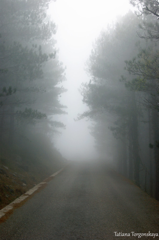 Горная дорога в тумане