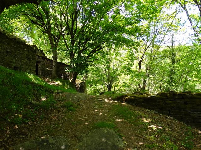 Camino en el PR-G 219 Ruta do río Pequeno
