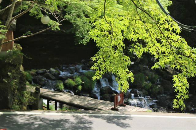 kifune-syaden040