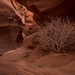 Rattlesnake Canyon, Page, AZ HDR