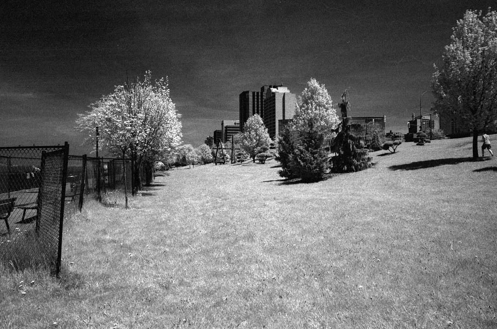 CCR:FRB - Review 19 - Rollei IR400 - Roll 04 (TMax Developer)