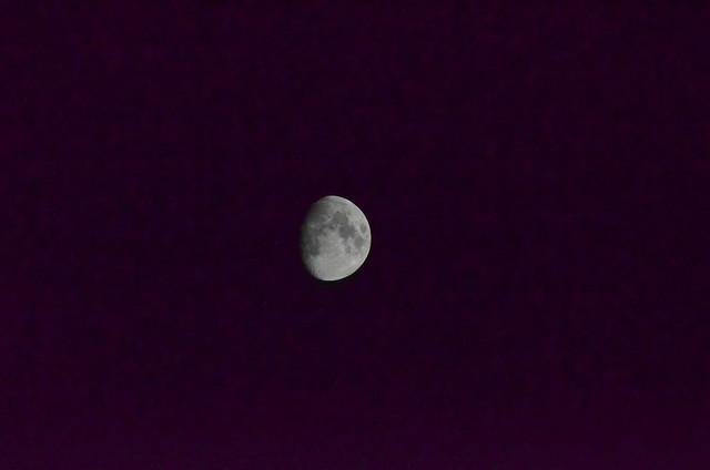 4-26-18 half moon