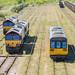 142017 & 66007 & 66104 & 66156 Northern & DB Cargo_5140061