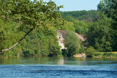 L'Yonne sauvage - Photo of Coulanges-la-Vineuse