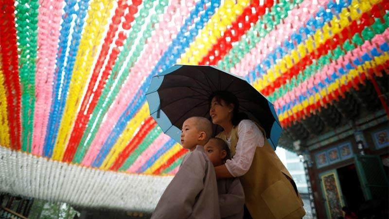 Samanera kecil di bawah naungan lampion warna-warni di Vihara Jogye