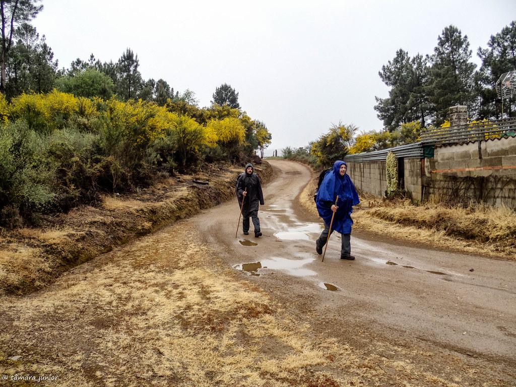 04.- CPIS - 2ª etapa (Verín-Viladerrei) (23)